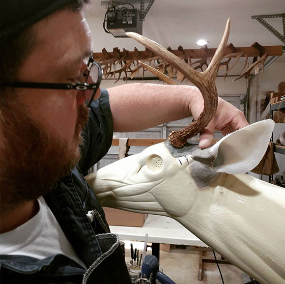 Whitetail ear butts with Critter Clay